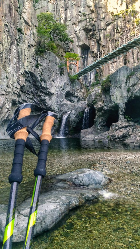 Cascade Mountain Tech Trekking Poles REVIEW