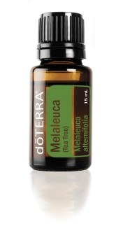 melaleuca-tea-tree-15ml