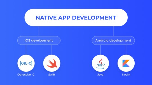 illustration image showing the different types of native mobile application development