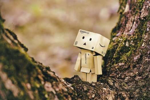 A humanoid made out of cardboard placed near a creek with Amazon written on it