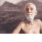 after the rain, ramana maharshi