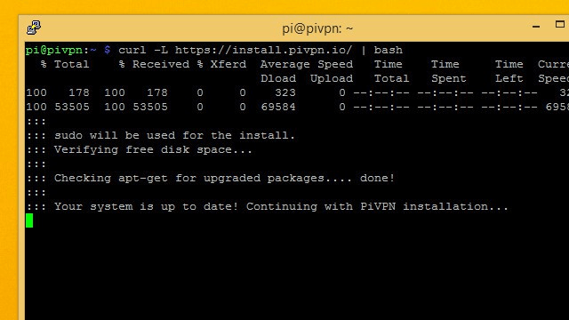 Terminal after installing PiVPN