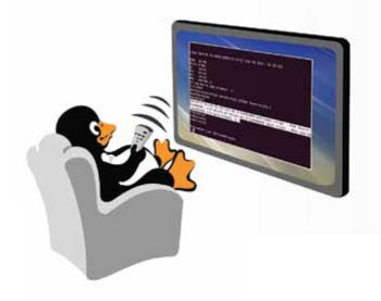 Using QEMU for Embedded Systems Development, Part 3 - LINUX For You