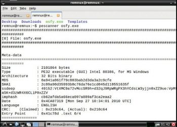 Malware Analysis Using REMnux