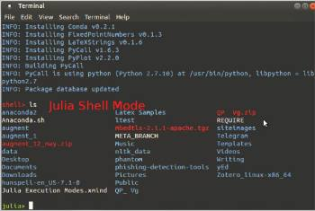 Figure 4 Julia shell mode