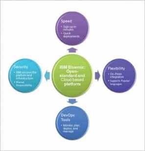 Figure 1 An Overview of IBM Bluemix