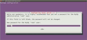 Figure 2 MySQL root password