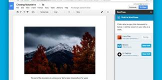 Google Docs add-on for WordPress sites