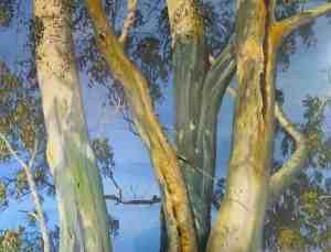 Graeme Myrteza Trees
