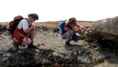 Geólogos que examinan ash-capa