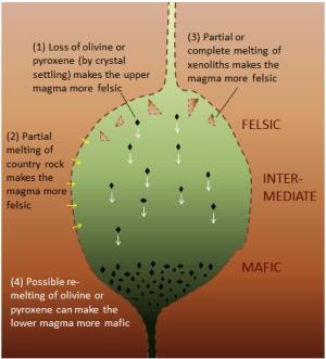Magma Chambers, (1) en la parte superior, la pérdida de olivino o piroxeno (por sedimentación cristal) hace que el magma superior más felsic, (2) la fusión parcial de roca país hace que el magma más felsic (3) la fusión parcial o completa de xenolitos marcas el magma más felsic, (4) la posible re-fusión de olivino o piroxeno puede hacer que el magma inferior más mafic