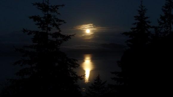 Super Moon Shining on the Bay by Karen Molenaar Terrell