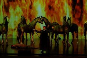 ウィーン国立歌劇場 日本公演 2016《ワルキューレ》第三幕より