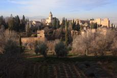 view-from-generalife
