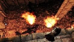 Dark Souls 2 pic 8