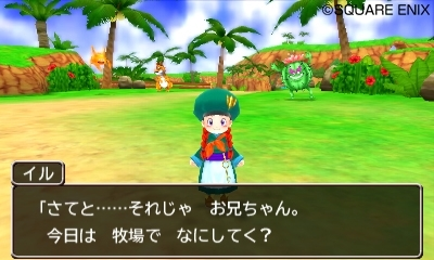 Dragon Quest Monsters 2 Farm