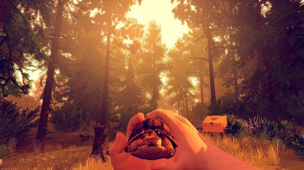 Firewatch | Turtle