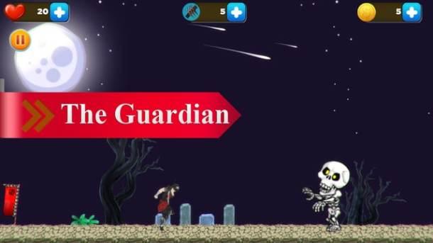 Ninja Avenger guardian