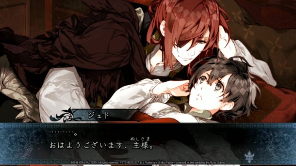 Psychedelica of the Ashen Hawk | Special CG