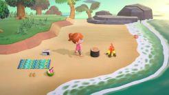 Animal Crossing New Horizons_4