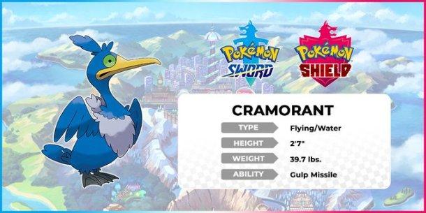 Pokemon Sword and Shield | Cramorant
