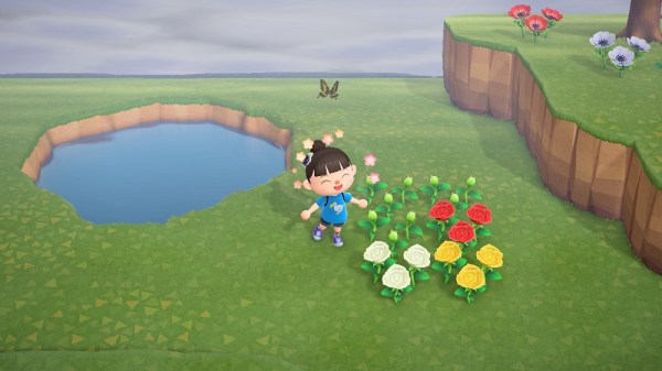 Animal Crossing New Horizons | Planted roses
