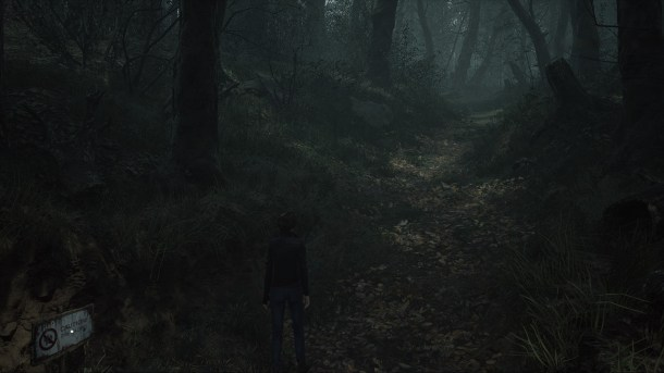 The Medium | The Woods