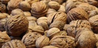 Учёные: Грецкие орехи помогают от рака