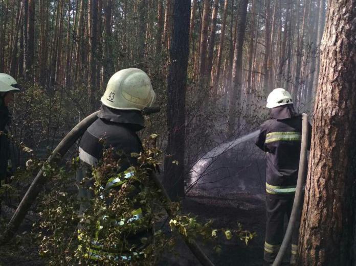 В Деснянском районе Киева горит травяной настил на площади 3 га 1