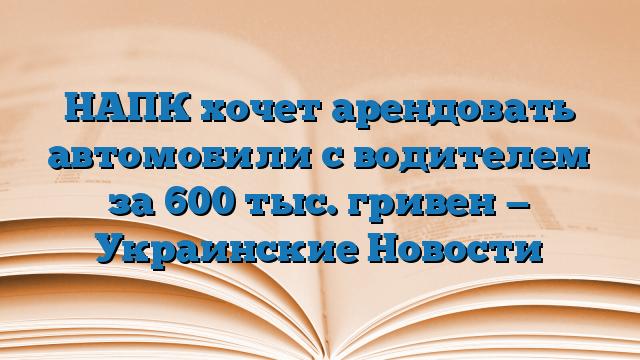 НАПК хочет арендовать автомобили с водителем за 600 тыс. гривен — Украинские Новости