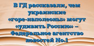 В ГД рассказали, чем украинские «горе-наполеоны» могут «удивить Россию» — Федеральное агентство новостей No.1