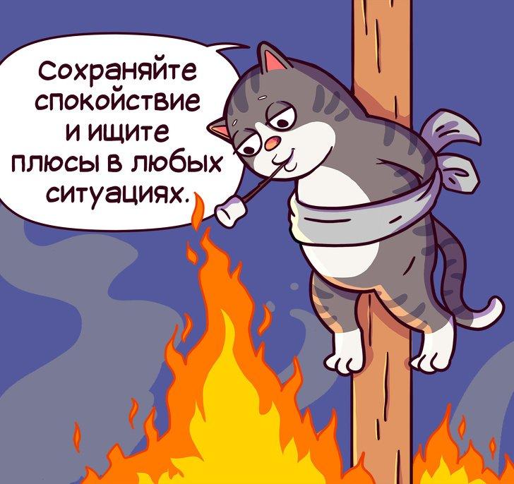Правила жизни кота Семена (комикс)