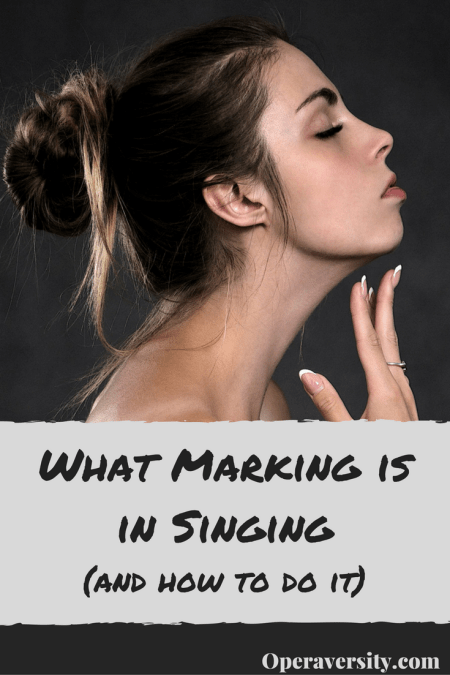 what-marking-is-in-singingand-how-to-do-it