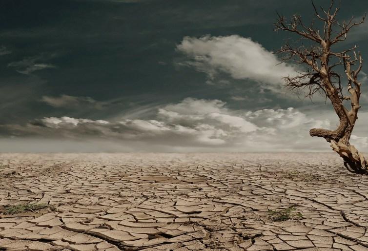 Photo d'un sol sec et désertique.