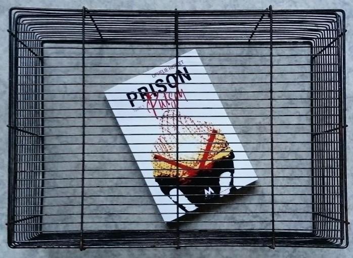"""Photo du roman """"Prison Putsch"""" prisonnier d'une boite grillagée."""