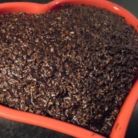 Fedtreduceret chokoladekage - den der du ved nok