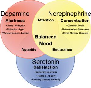 l tyrosine for opiate withdrawal