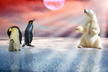 Klimaatalarmisme gevisualiseerd
