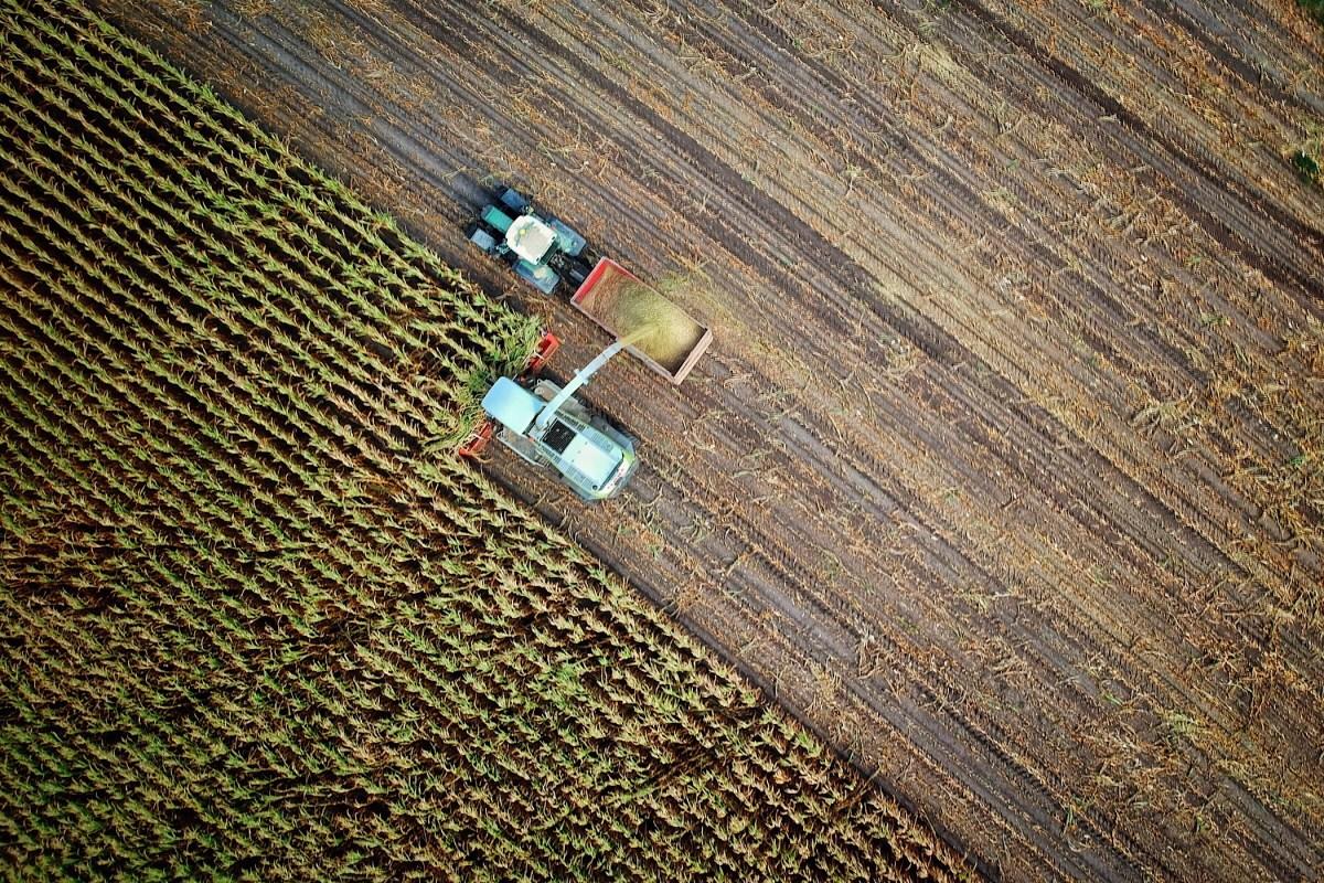 Het net om Monsanto wordt aangetrokken