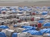 opvangkamp Ain Issa (Syrië)