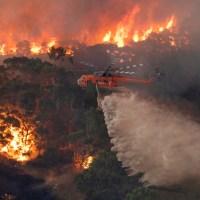 De 'Groene' bosbranden in Australië en Californië