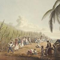 Herstelbetalingen voor historische slavernij zijn absurd