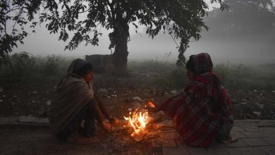 Photo of উত্তরের পাশাপাশি দক্ষিনেও ব্যাটিং শুরু করেছে শীত