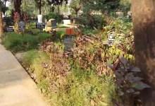 Photo of ঘটল অস্বাভাবিক ঘটনা ! কবরের স্থান থেকে উধাও শবদেহ
