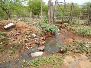 20160125174605-300x225 Mato, lixo e esgotos a céu aberto mostram descaso da Gestão do Prefeito Junior Nobrega no município da Prata, no Cariri