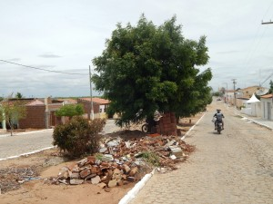 20160125175421-300x225 Mato, lixo e esgotos a céu aberto mostram descaso da Gestão do Prefeito Junior Nobrega no município da Prata, no Cariri