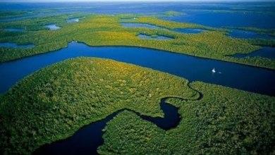 Amazônia Desconhecida 2