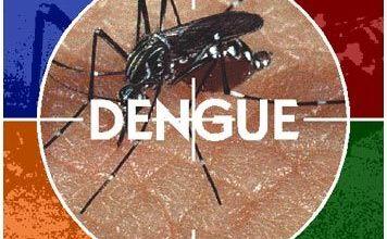Capital argentina já tem sete casos confirmados de dengue 4