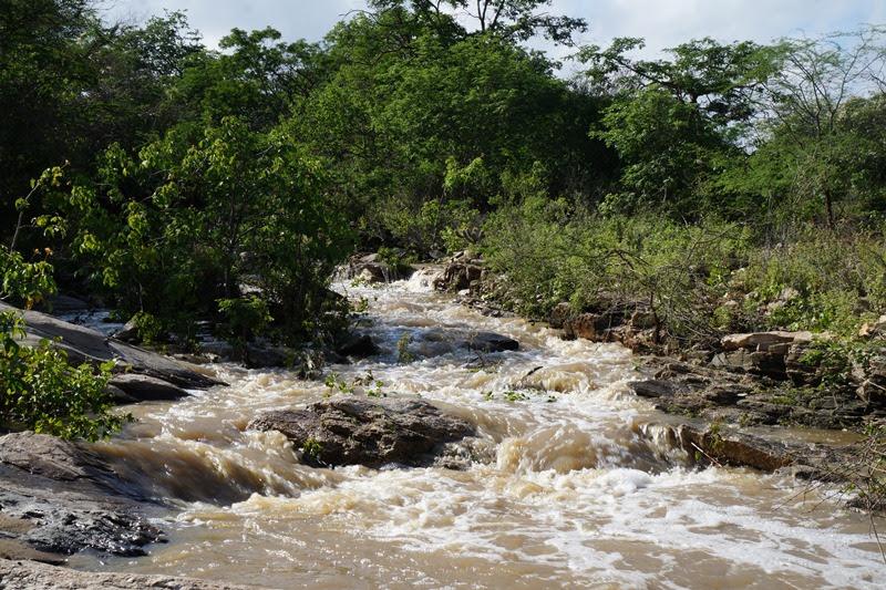 unnamed-3 Chove 50.5 milímetros em São Sebastião do Umbuzeiro