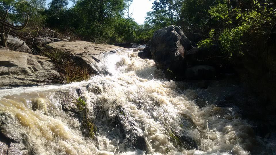 unnamed-4 Chove 50.5 milímetros em São Sebastião do Umbuzeiro